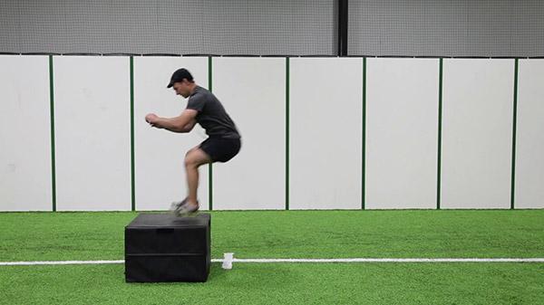 Box Jumps - Off Ice Hockey Exercise
