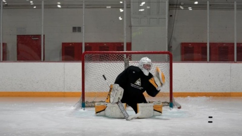Glove Save Progressions - Ice Hockey Goalie Training