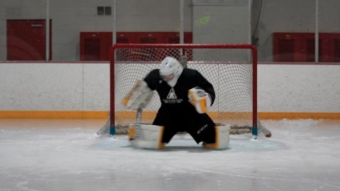 Stick Save Progression - Goalie Training