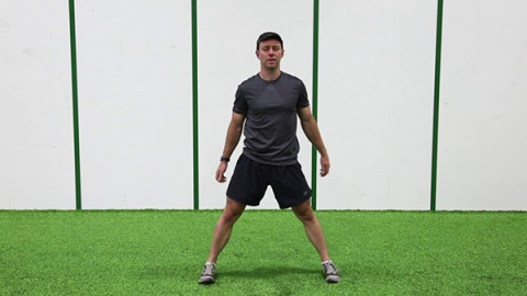 Lateral Squat and Leg Lift