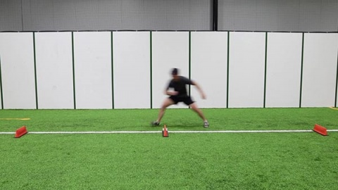 Pro Agility With Shuffle