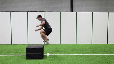 Single Leg Box Hops