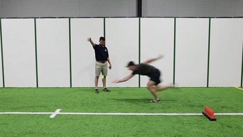 Tennis Ball Drop - Pushup Position